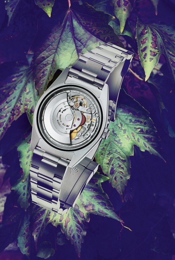 A Watch For 2016 : Rolex Oyster Perpetual 39
